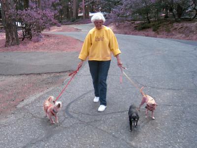 Janene's Doggie Friends 8-/2010