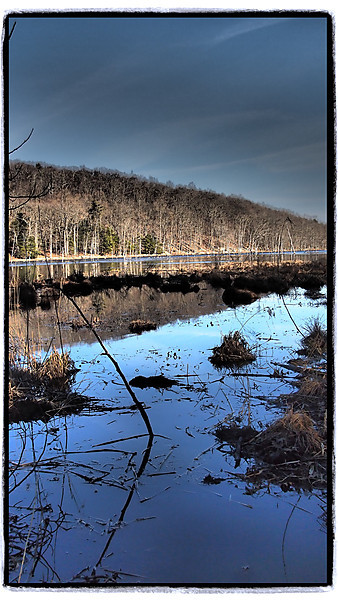 Bennetts Pond 2-20