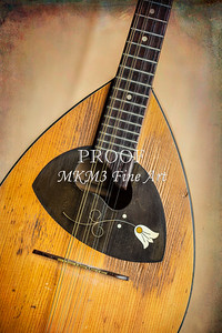 Framus Mandolin Fine Art Photographs