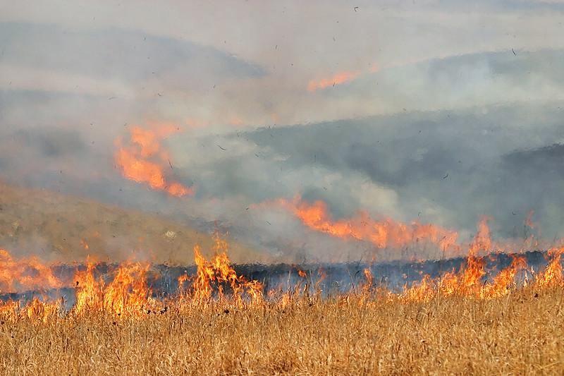Burning the Flint Hills Prairie