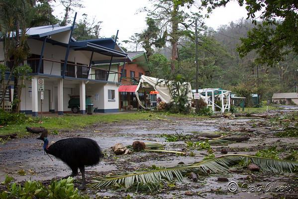 Cyclone Yasi.