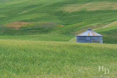 2007-06 Rolling Hills