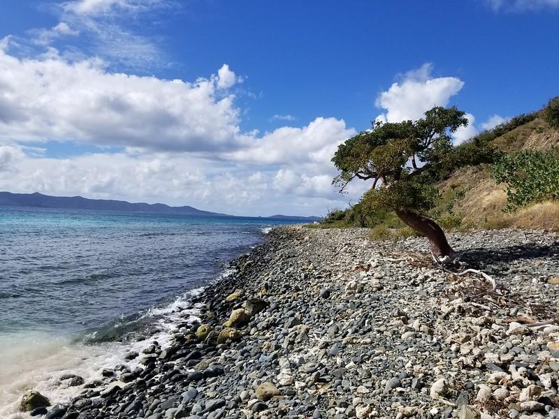 Tortola - Jost Van Dyke (20).jpg