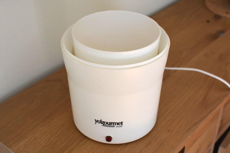 Yogurt - 1.jpg