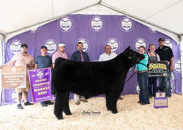 2020 Michigan Livestock Expo