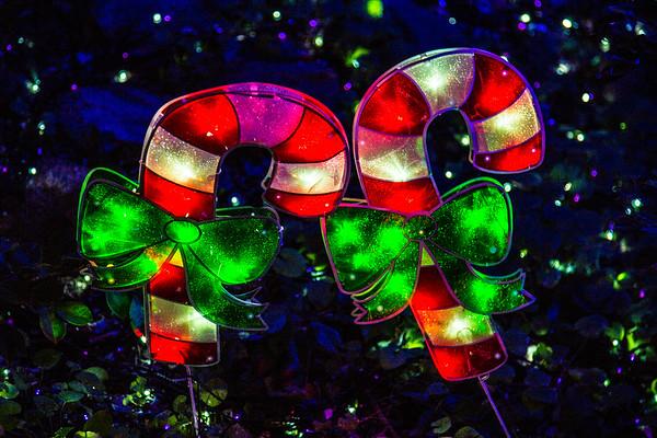 Guinness World Record Christmas Lights