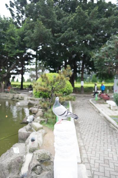 2019-12-31 Taiwan-405.jpg