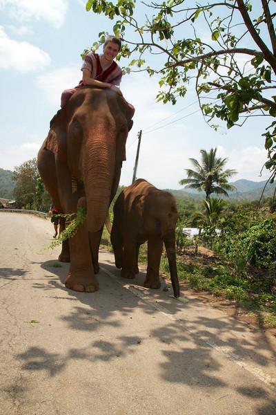 Roewe_Thailand 122.jpg
