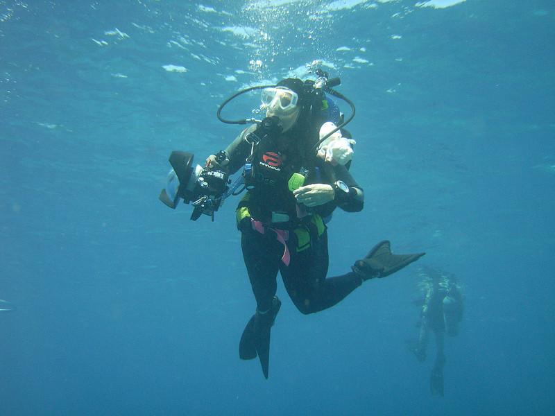 Diving Diva by Jay Schwartz.jpg