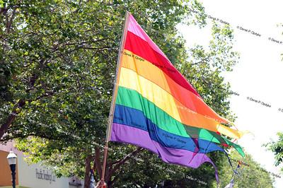 Santa Cruz Pride - June 1st, 2014