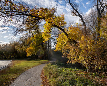 Bike ride through assiniboine Forest - Sept 29, 2020