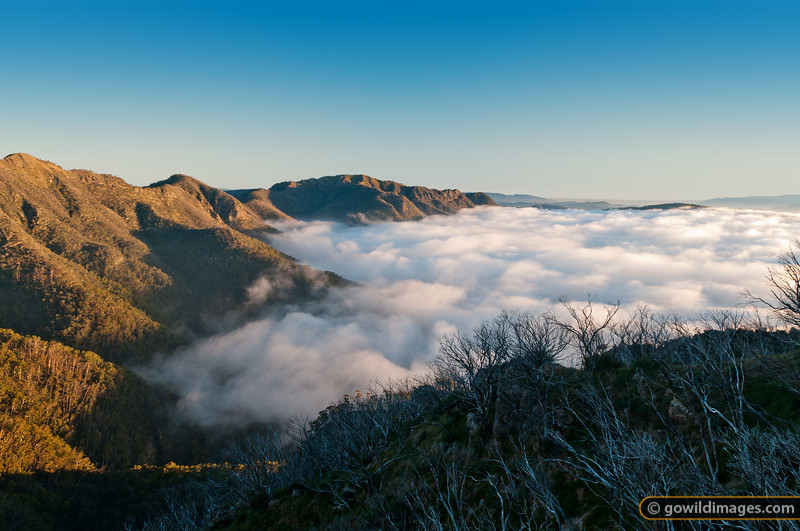 Sunrise looking over Devil's Staircase toward Mt Speculation (centre) with Terrible Hollow under cloud. Mt Buggery is left of centre and Crosscut Saw far left.