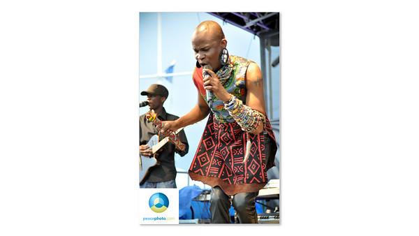 Afrofest July 2013
