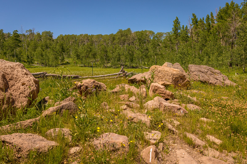 Kolob Terrace Road/Right Hand Canyon Rd Virgin to Hwy 14