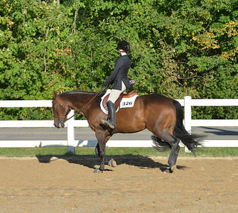 Event 63  -  All Breed Hunt Seat Equitation