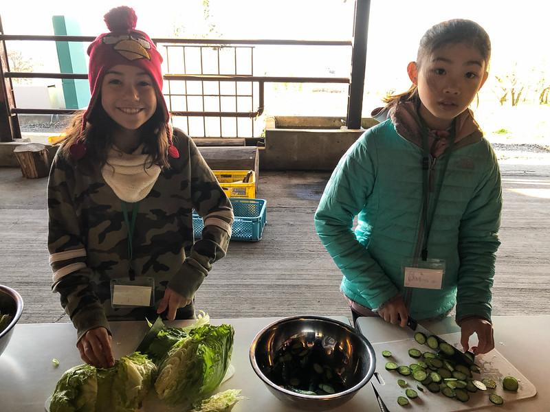 Grade 4 Expedition-Fujinomiya Global Eco Village-IMG_1060-2018-19.jpg