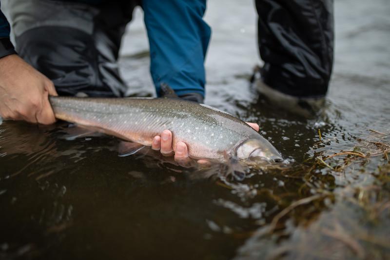 holknaicelandatlanticsalmonflyfishing.bencarmichael (91 of 343).jpg