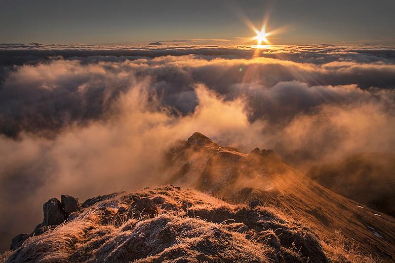Down on Mt. Viševnik