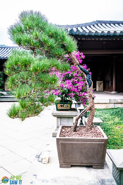 Nan-Lian-Garden-00300.jpg