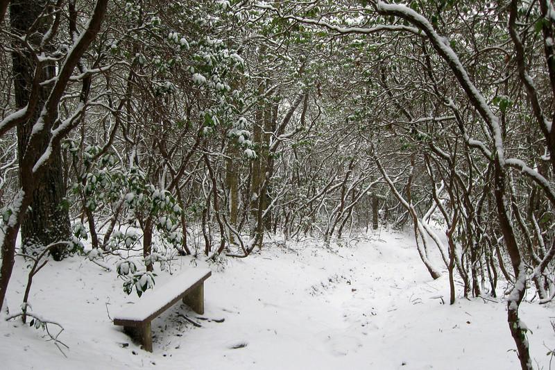 Plunge Basin (Upper) Trail