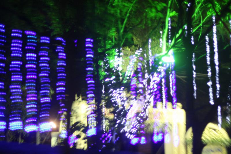 2010-05-26_006.JPG