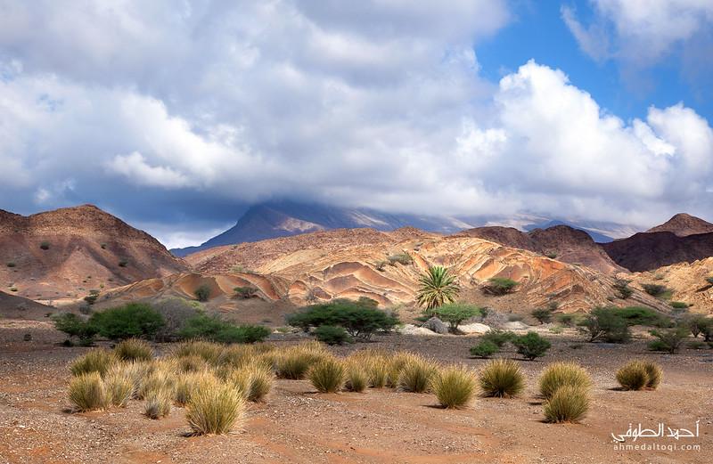 Oman (261).jpg