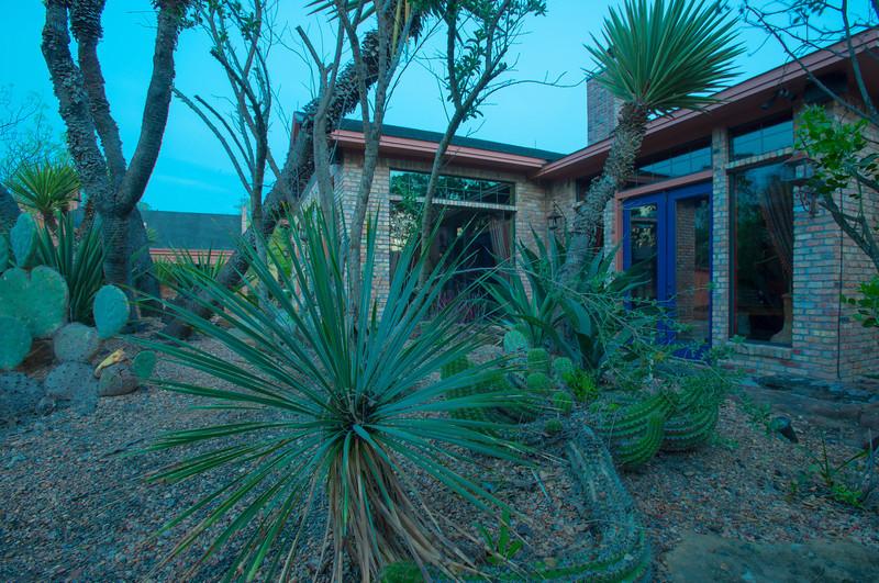 htx-cactus-space034.jpg
