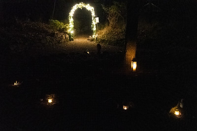 Picking an angel at winder solstice