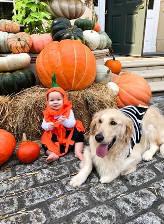2019 Dorsey Alston Pumpkin Patch (3 of 30).jpg