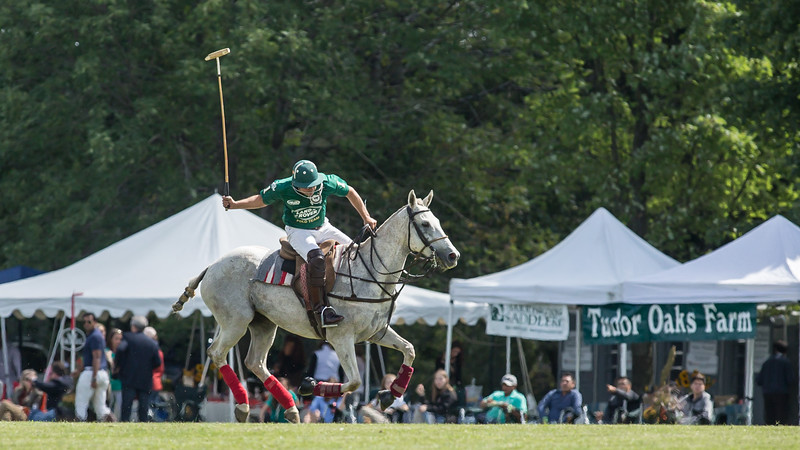 BarringtonPolo-1041.jpg