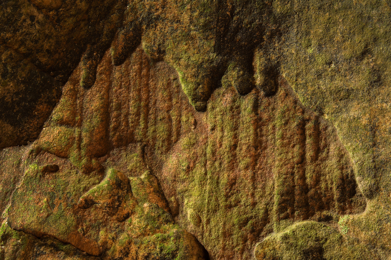 Rock City Detail