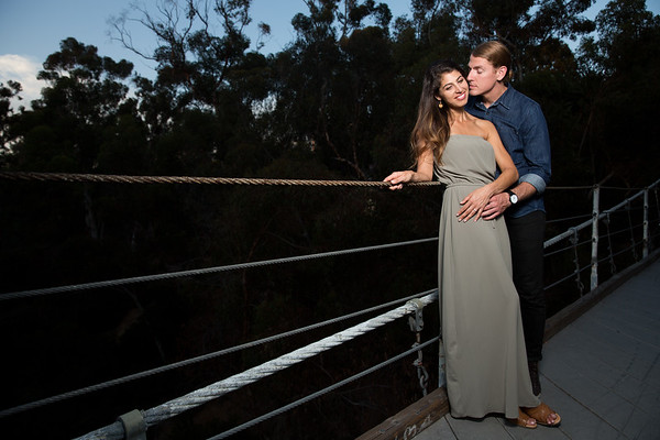 {Lisa & Martin's Engagement / Wedding Day}