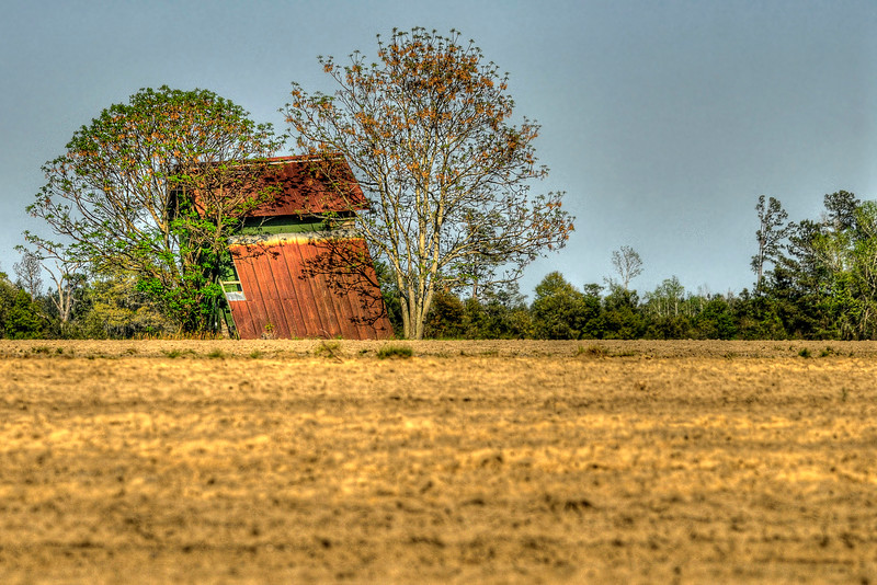 An old barn in Galivants Ferry, SC on Monday, March 26, 2012. Copyright 2012 Jason Barnette