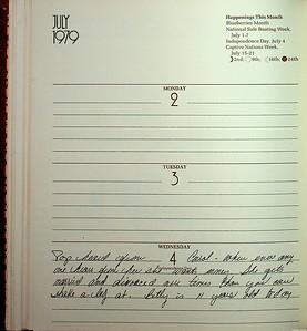 Cherry's Diary