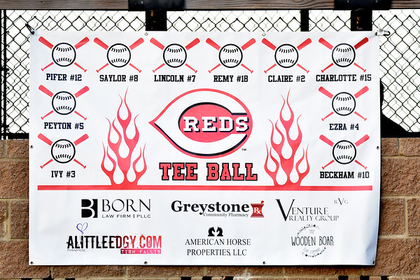 the Reds (Tball 2019)