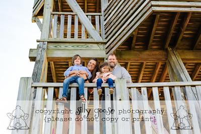 Nicknardavich Family 2020