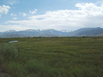 White Mountain, August 7, 2005
