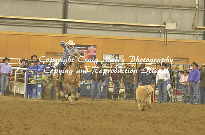 Ribbon Roping 05-04-14