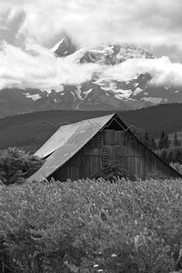 Black and white shot of barn in front of Mount Hood, OR