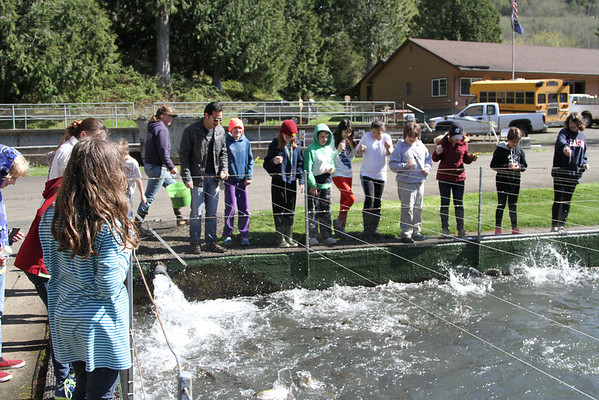 Elementary School Fish Hatchery Trip