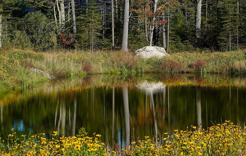 Coastal Maine Botanical Gardens, Boothbay, Maine