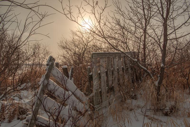181223 Snow 0051.jpg