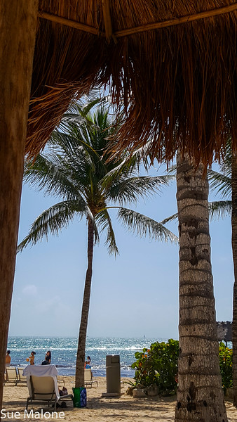 Day at the Beach (20 of 25).jpg