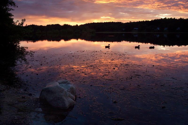 Buckmaster Pond 7-26-13.jpg