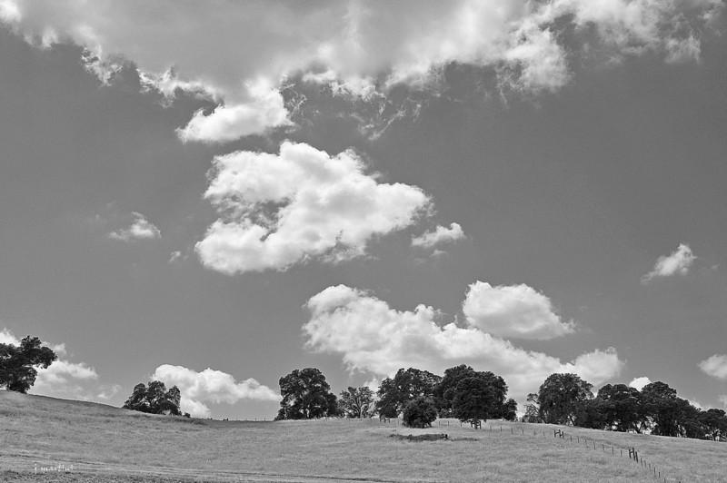 clouds b&w 5-17-2013.jpg