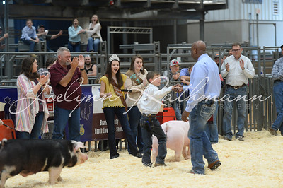 Hog Ringshots - Grand and Showmanship