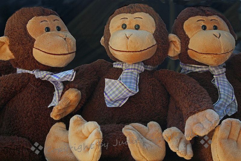 Monkeys Three ~ These stuffed monkeys were in a booth at the Lavender Festival.  Notice their spiffy lavender plaid ties??