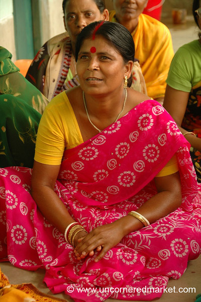 Indian Woman in Sari, Microfinance - West Bengal, India