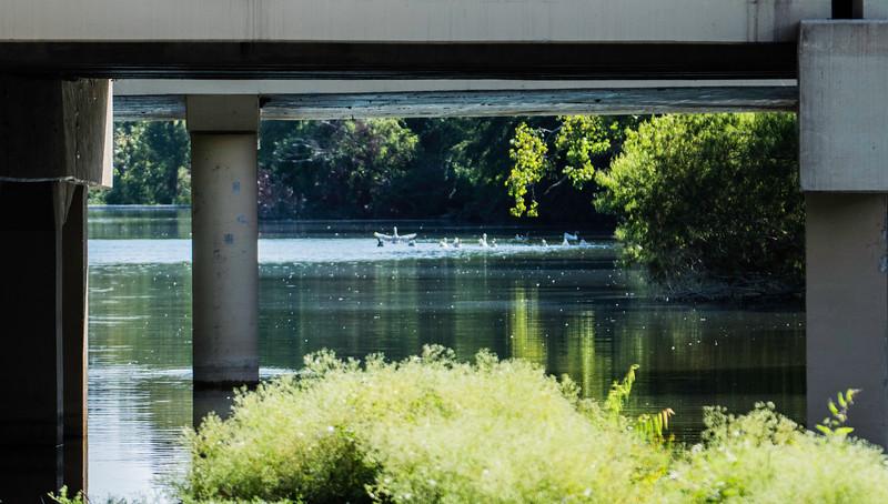 Window 2 DSC_3497.jpg