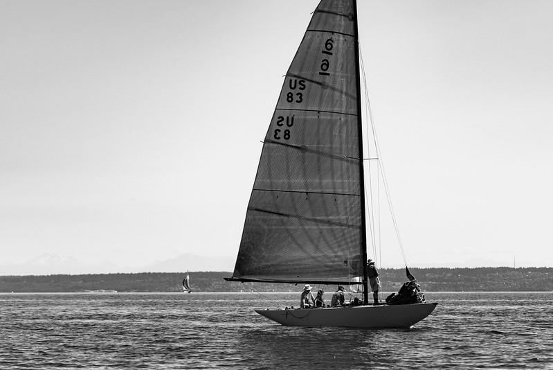 6meter_race-6512-2.jpg